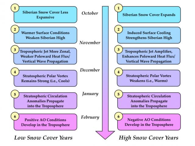 winter outlook SAI steps