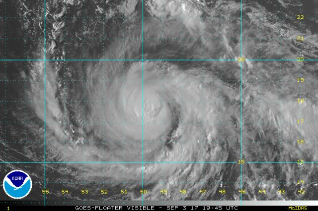 Irma vis
