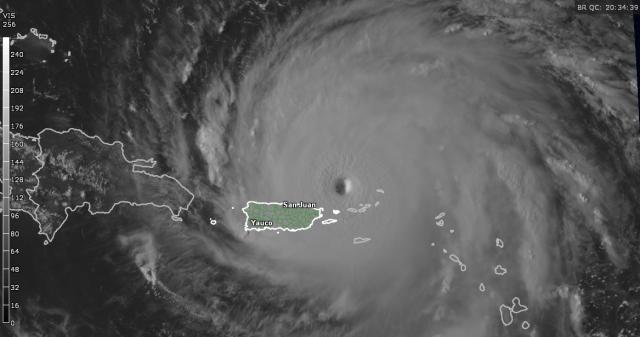 Irma vis.png