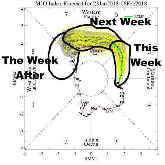 MJO forecast