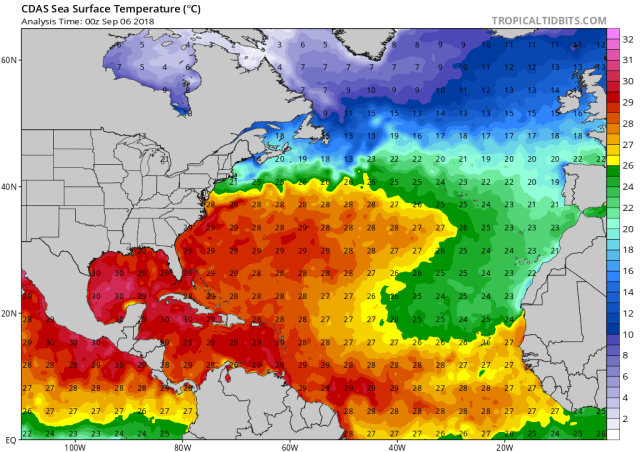 Florence SSTs.png